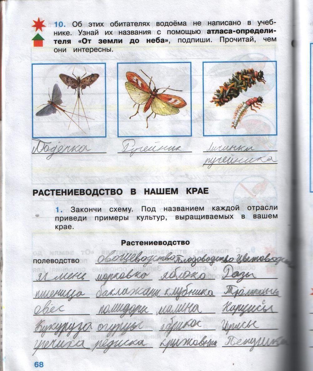 Решебник По Окружающий Мир Рабочая Тетрадь 4 Класса Плешакова Крючкова