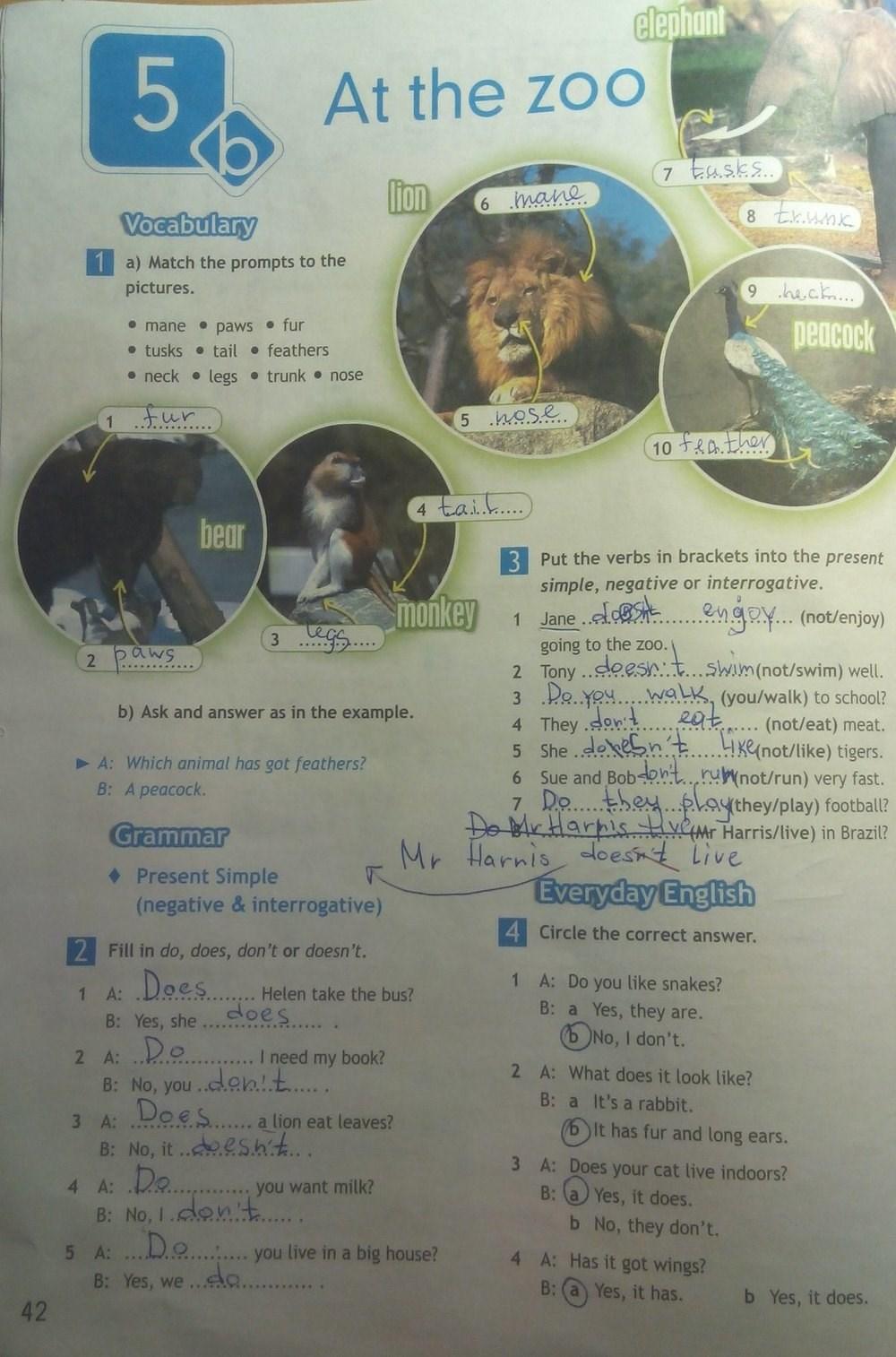 гдз английский язык рабочая тетрадь к учебнику горячевой