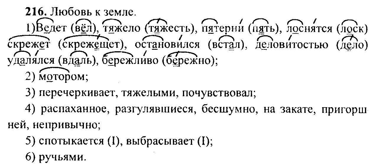 2000 русскому класс гдз года ладыженская 6 по языку