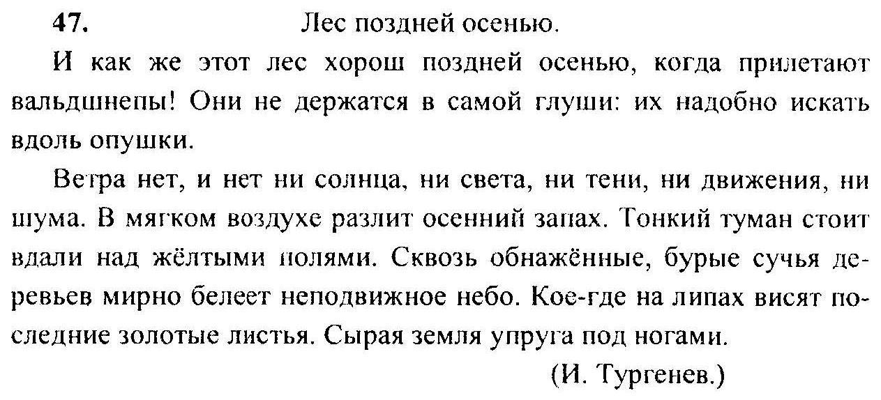 2019 6 языку класс гдз по русский