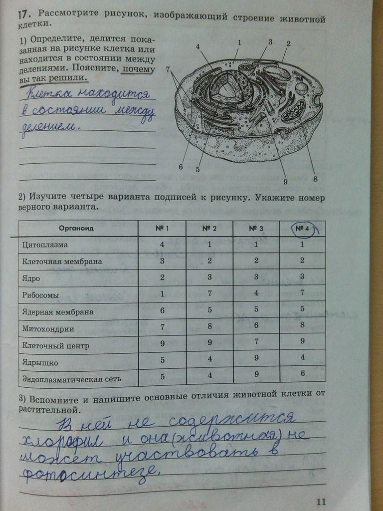 ответы гдз 6 на тетрадь биология класс