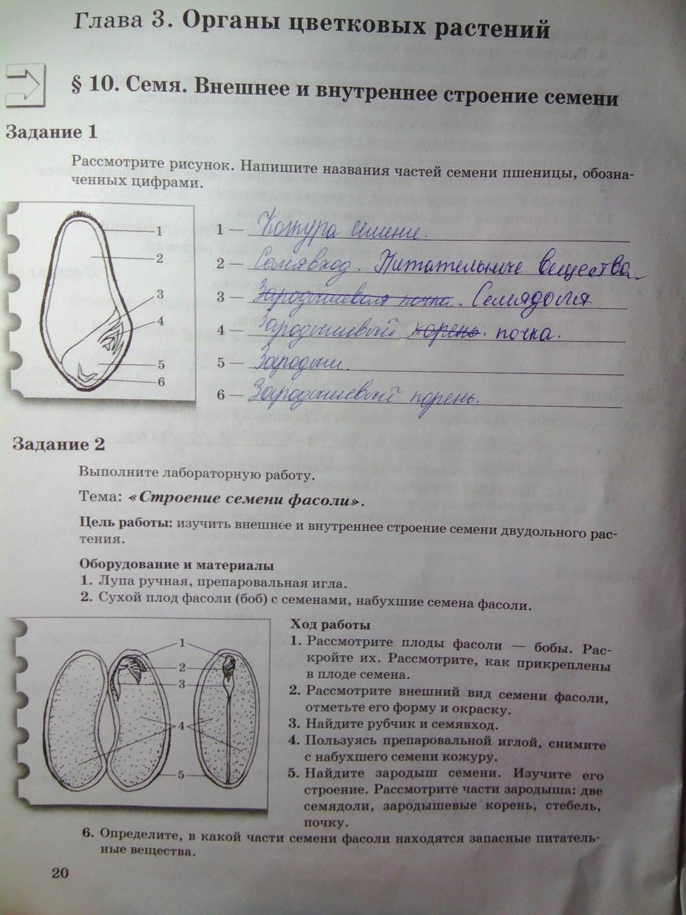 По автор гдз класс биологии 6