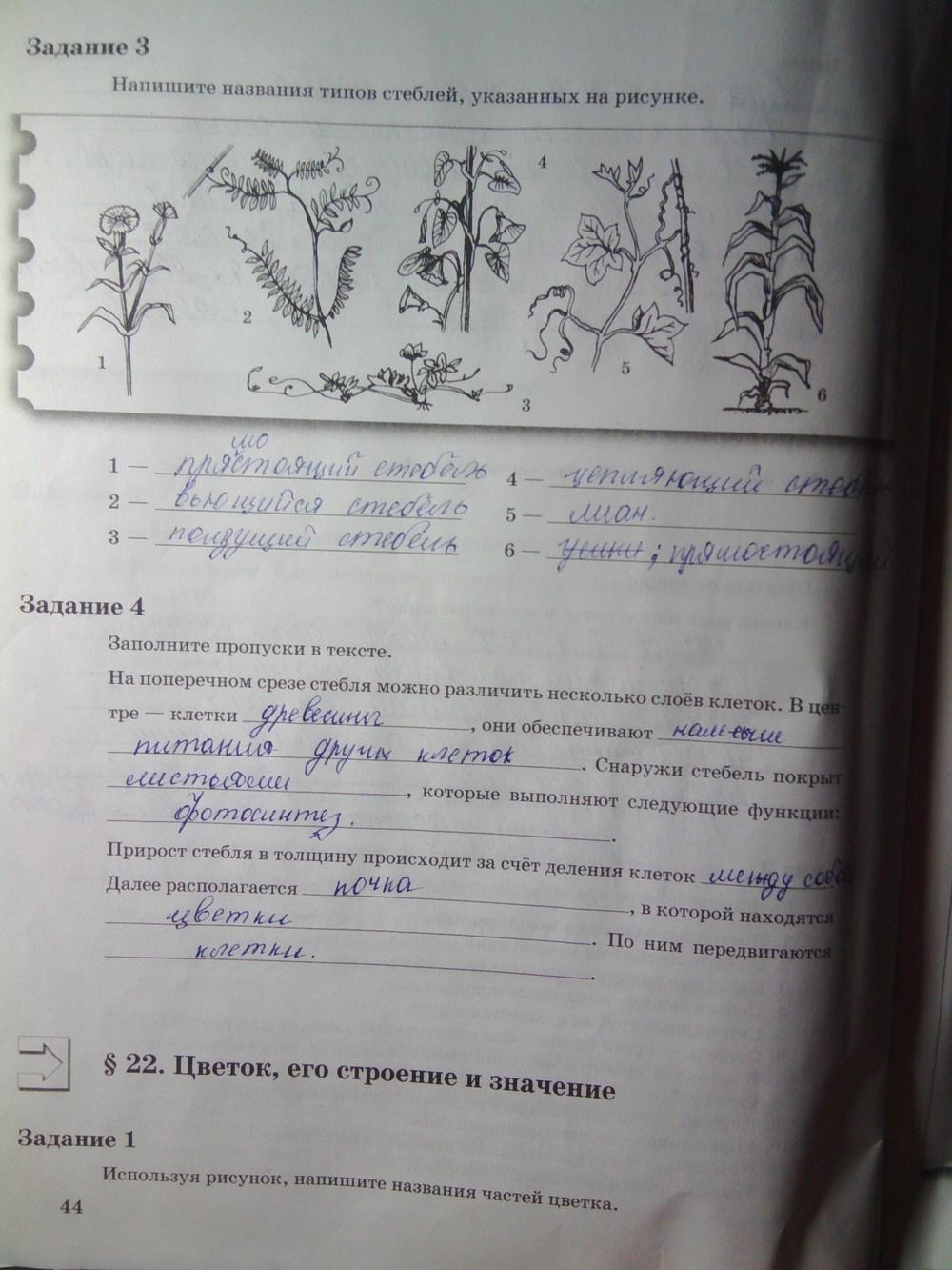По 6 часть биологии тетрадь 2 рабочий и.н пономарева гдз класс