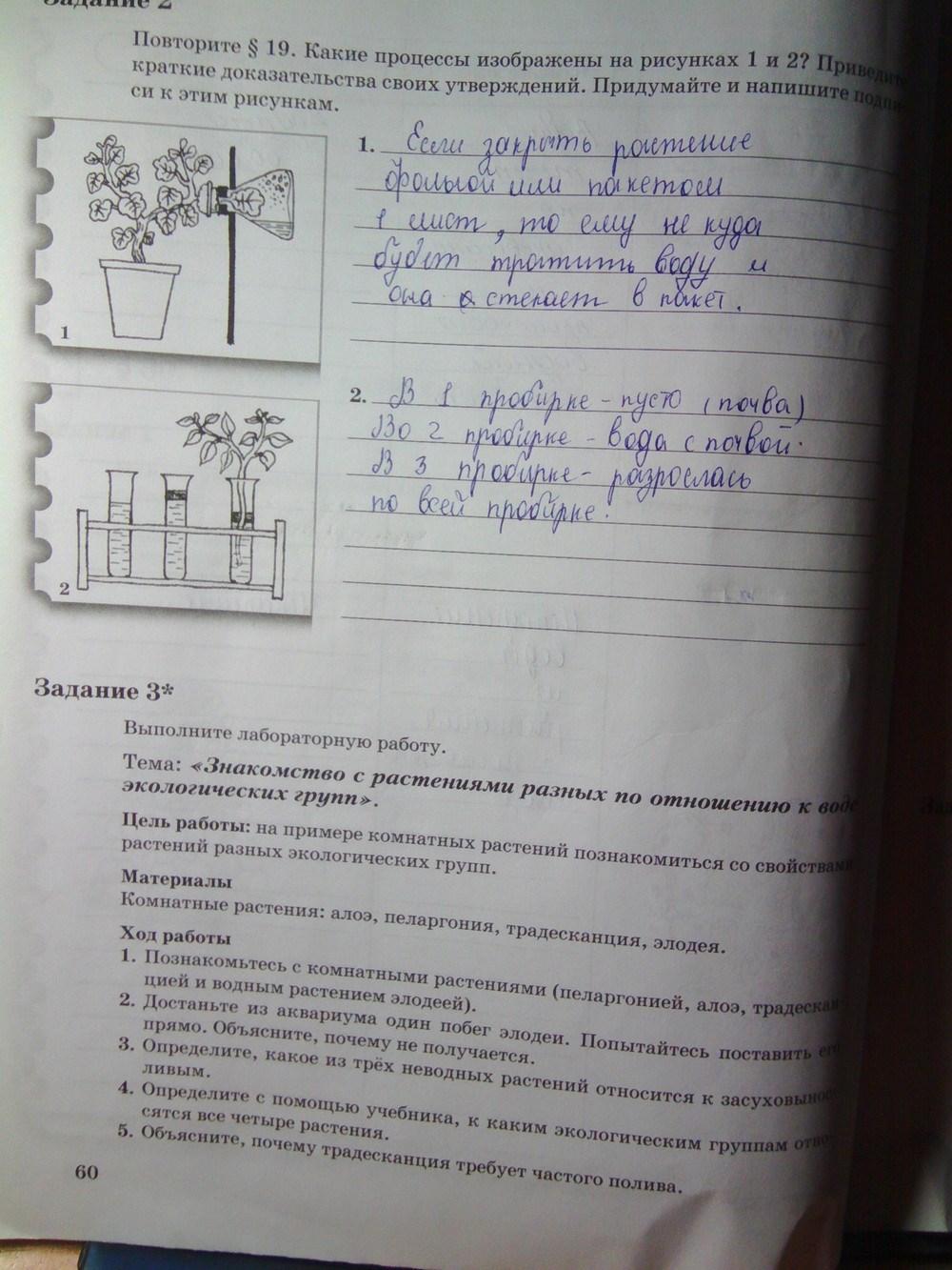 Решебник 6 класса по биологии пономарева корнилова кучменко