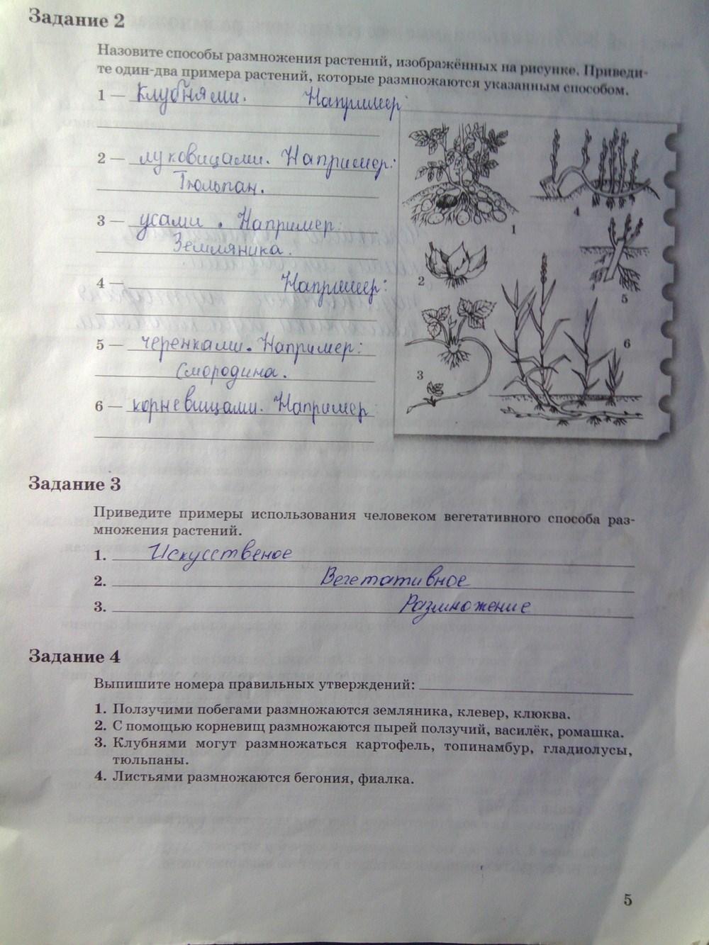 пономарев биологии тетрадь корнилов 6класса рабочая гдз часть по 2