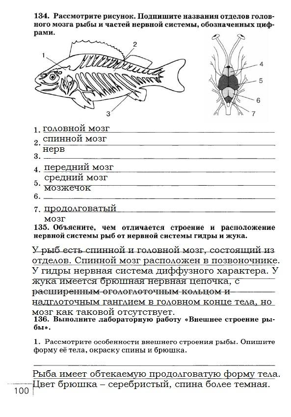 Гдз По Биологии 7 Класс Рт Сонин С Рыбками