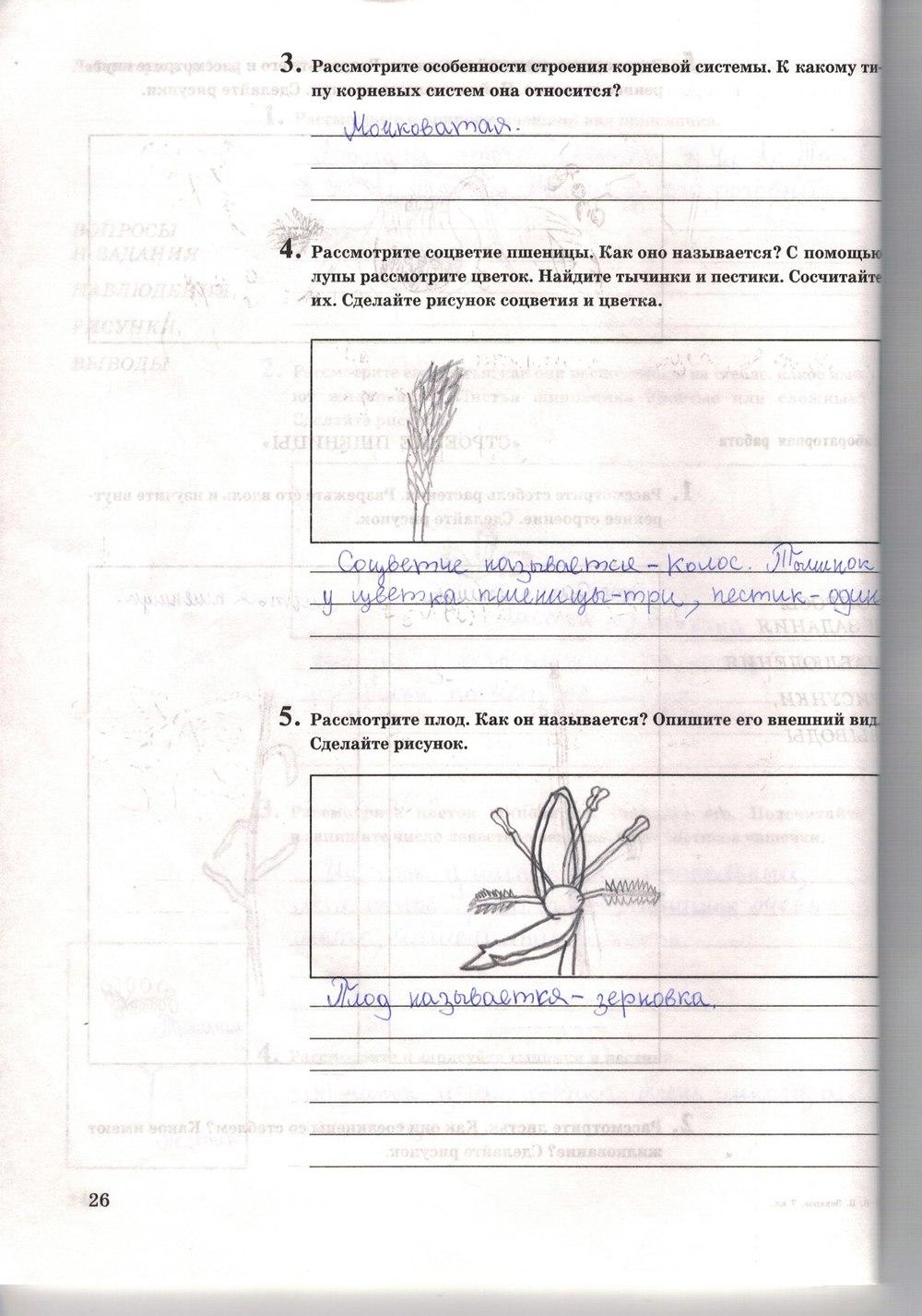 Решебник По Рабочей Тетради Биология 7 Класс Захаров И Сонин