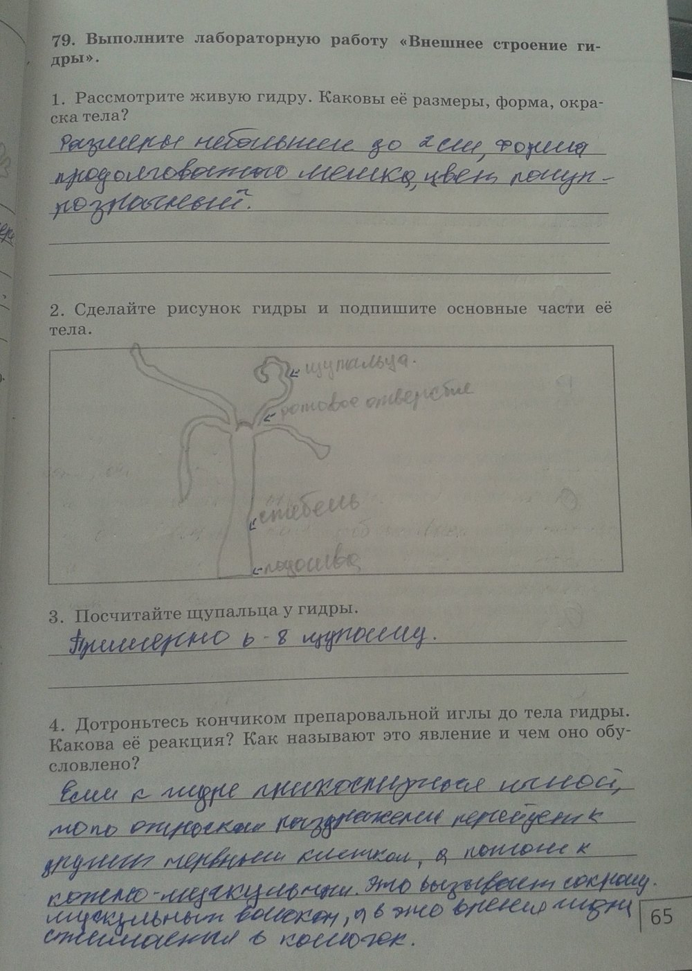 Биология 7 класс раб.тетрадь захаров сонин гдз