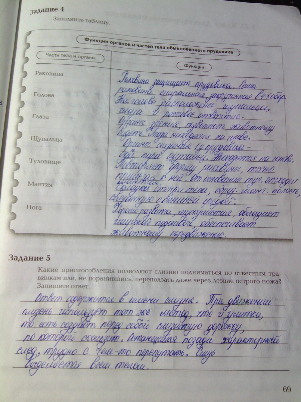С в в с 7 гдз класс биология суматохин