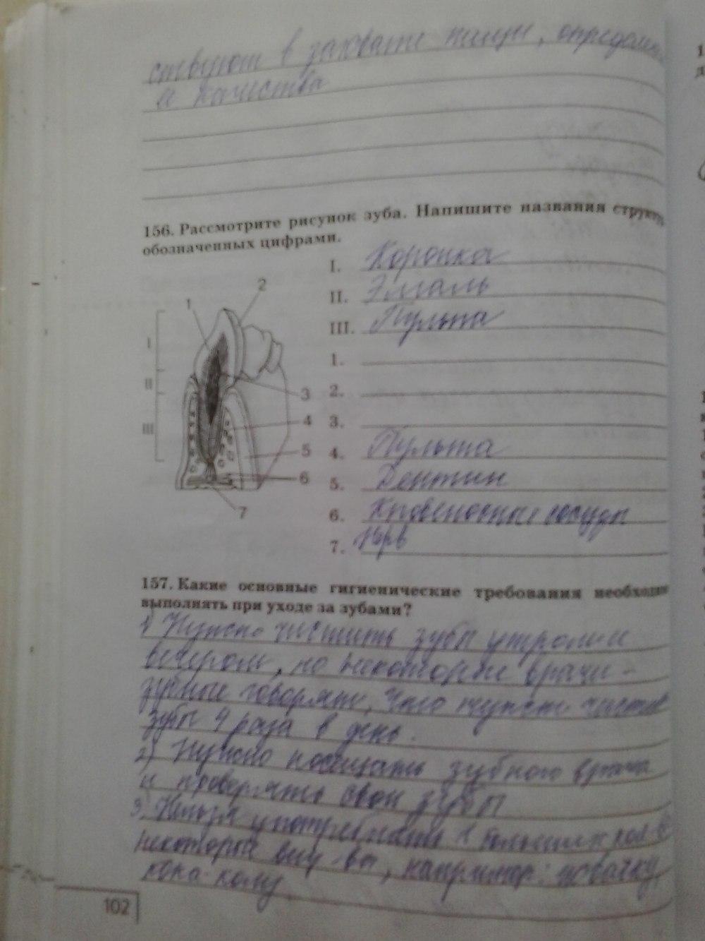 Гдз по беологии сонин