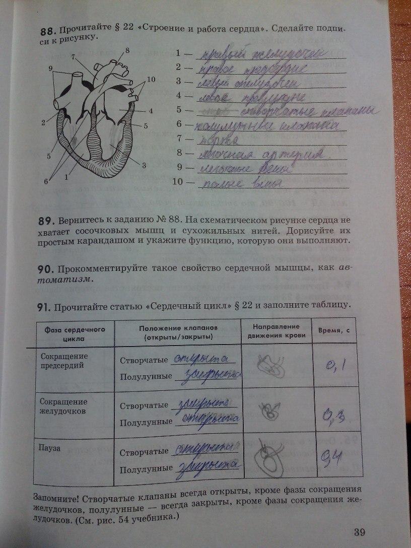 Решебник По Биологии Рабочая Тетрадь Маш Беляев
