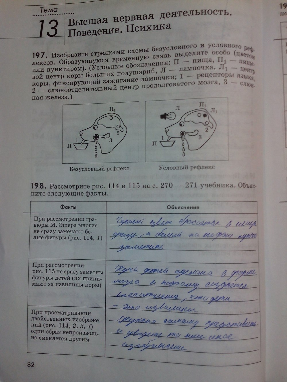 Гдз 8 класс по биологии колесов учебник ответы на