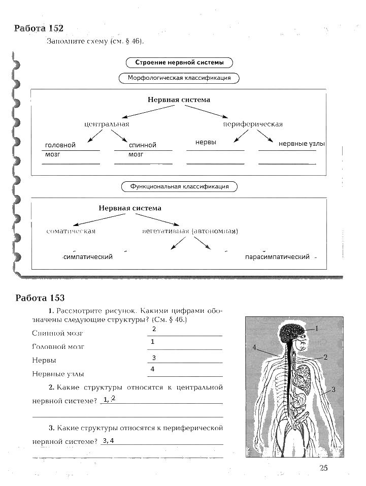 2 8 гдз по биологии драгомилов маш тетрадь часть фгос класс рабочая