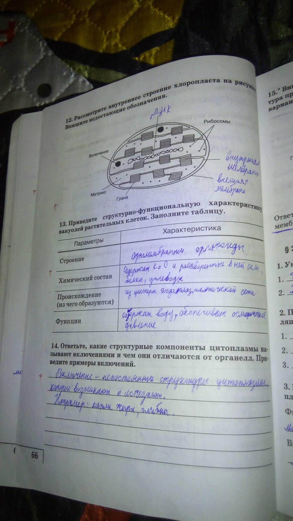 Гдз По Биологии 9 Класса Цибулевский Захаров Сонин