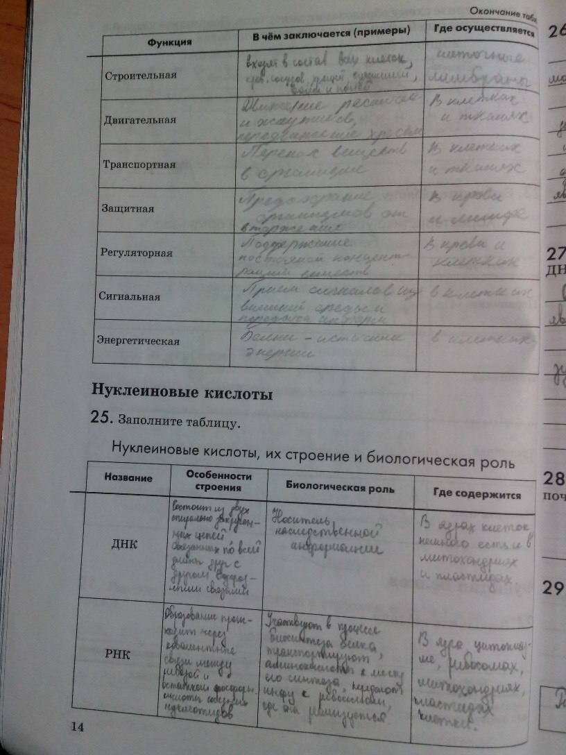Гдз Биология Рабочая Тетрадь Пасечник Шевцов
