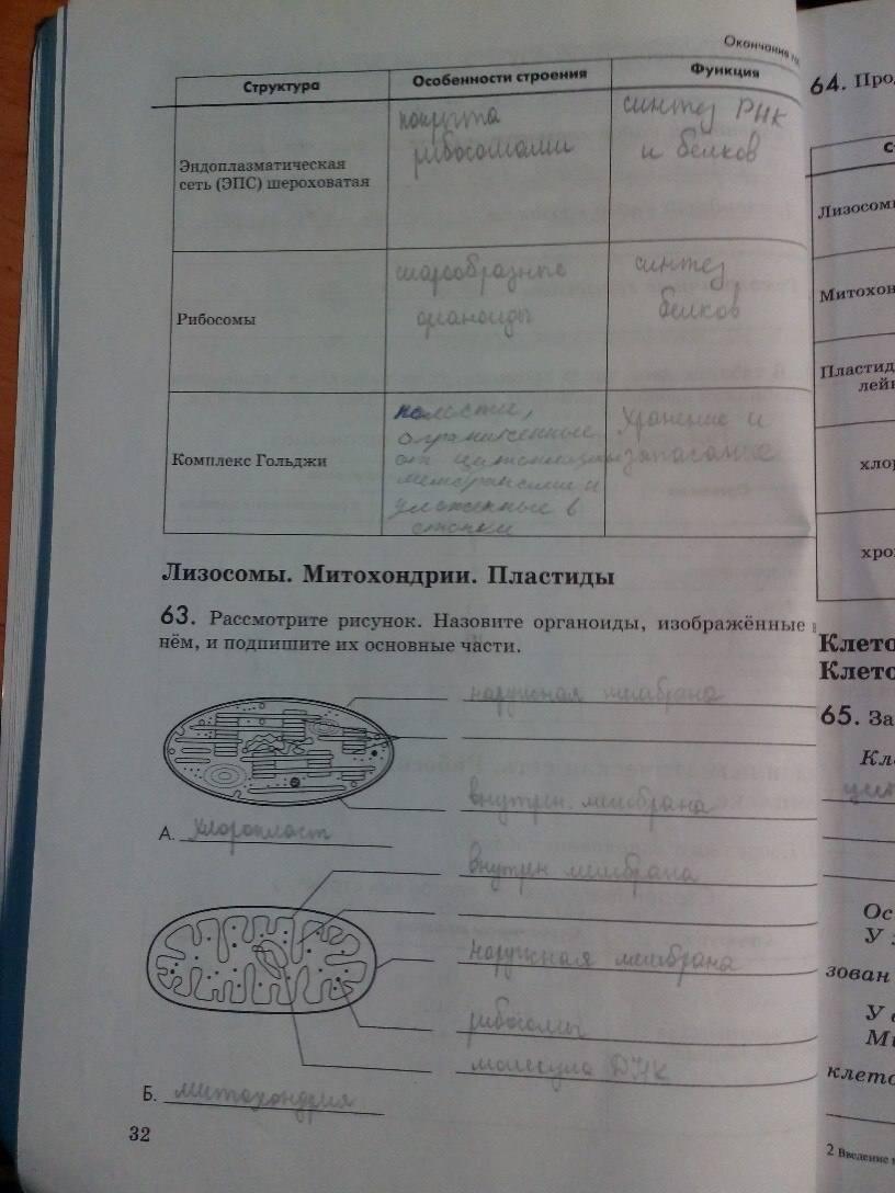 биология швецов пасечник 2019 класс 9 гдз