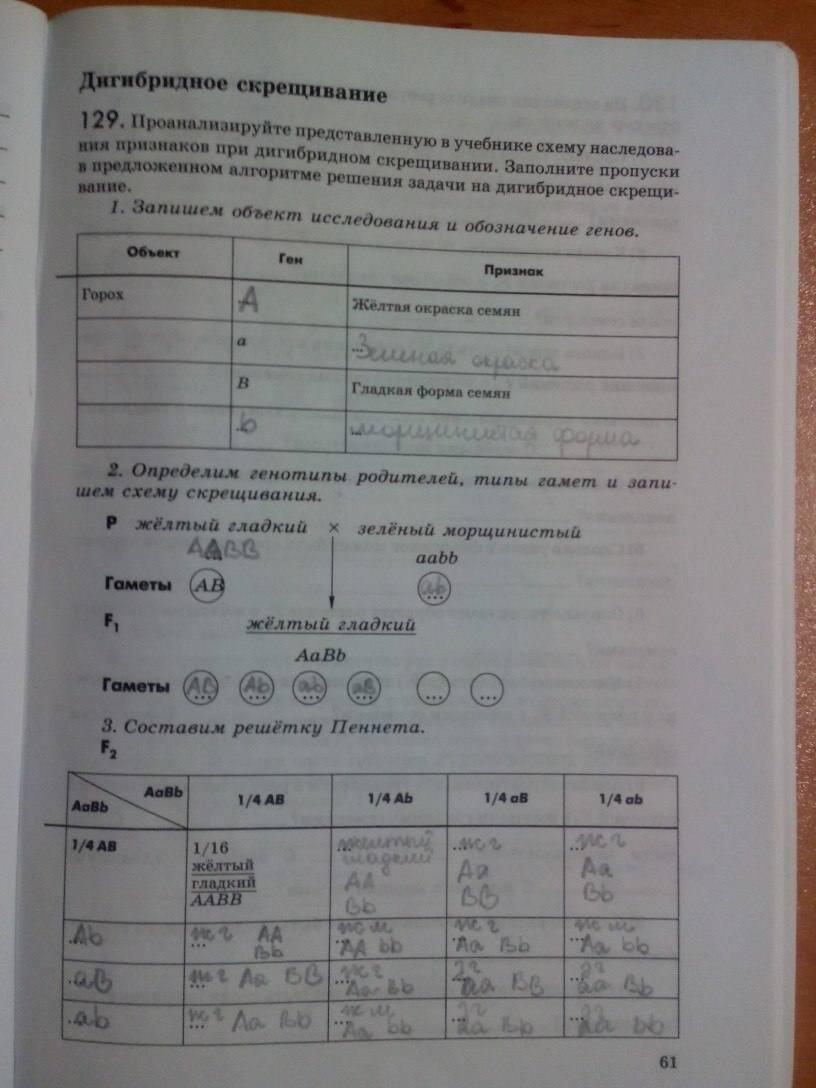 Решебник К Учебнику Биологии 9 Пасечник